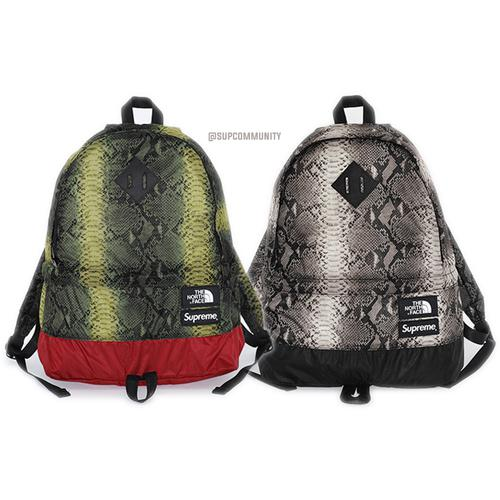 4a3ed6c22d9 The North Face Snakeskin Lightweight Day Pack ...